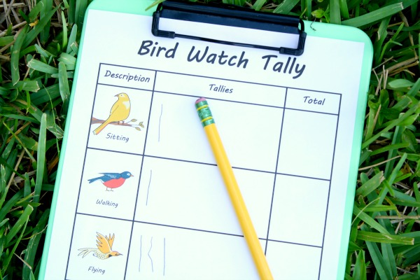 Outdoor-Activity-Bird-Watch-with-Free-Printable fantastic fun and learning