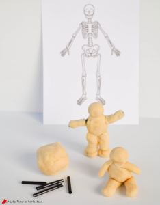 a little pinch of perfect skeleton playdough activity