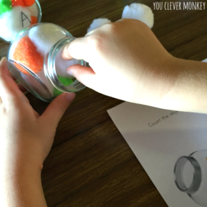 Fuzz Bug Counting Activity