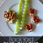 Back-Yard-Bug-Snacks
